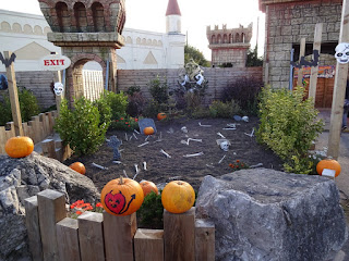 A few of the pumpkins at Southport Pleasureland last Halloween