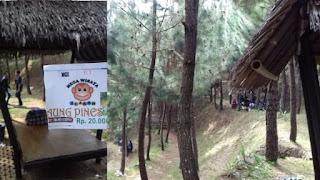 saung pines icakan ciamis