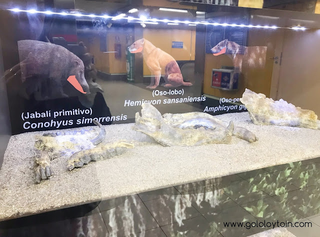 Yacimiento arqueológico estación Carpetana Metro de Madrid