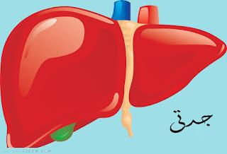 علاج دهون الكبد جابر القحطاني