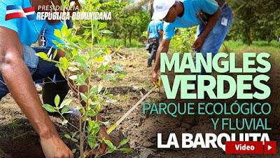 VÍDEO: Mangles verdes, Parque Ecológico y Fluvial La Barquita.