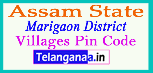 Marigaon District Pin Codes in Assam State
