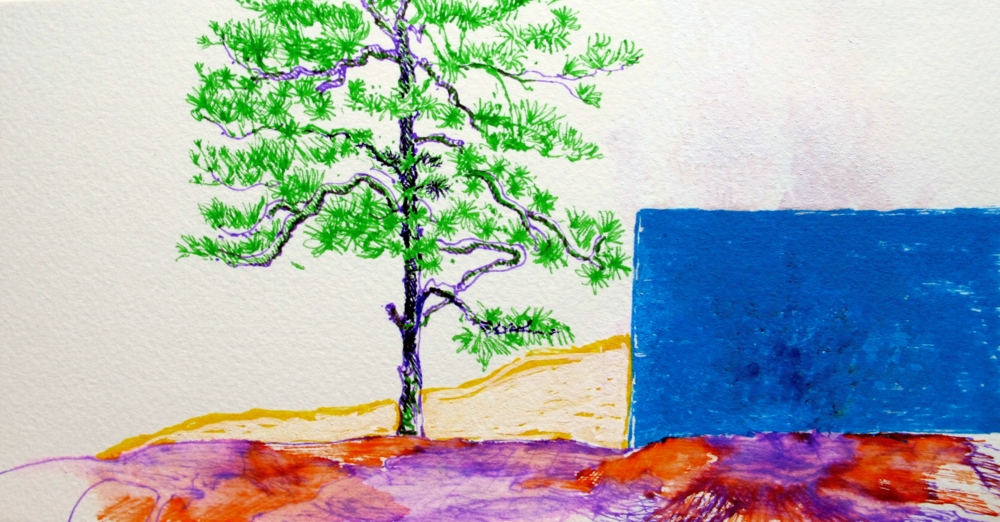 Marker pendrawing of pine tree on paper by susan wellington