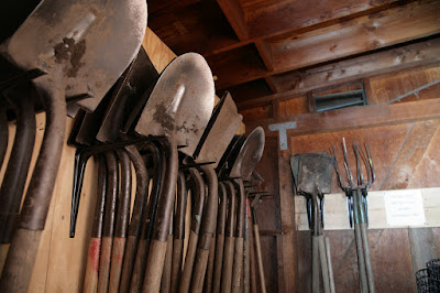 Time to Renew Your Garden Tools