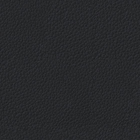 Texturise Free Seamless Textures With Maps: Seamless Black ...Black Leather Texture Seamless