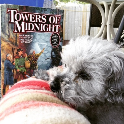 Murchie lays in a dog bed with pink and tan striped edges. His paws are on the rim of the bed and his chin just barely rests on it. His eyelids droop. Behind him, outside the bed, is a hardcover copy of Towers of Midnight. Its cover features three white men standing before a silver stone tower.