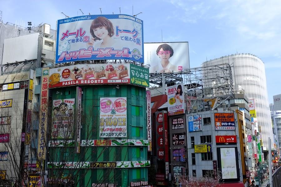 Shinjuku hanami 2017