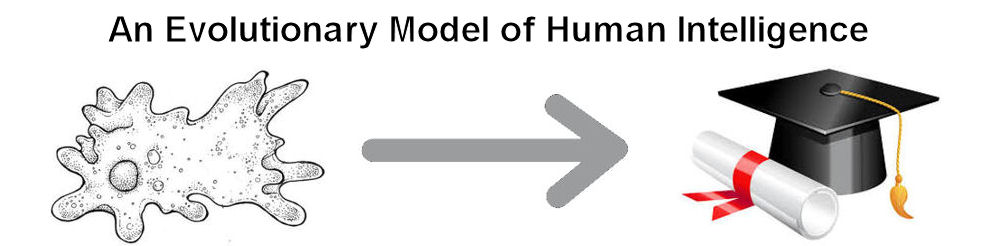 An Evolutionary Model of Human Intelligence
