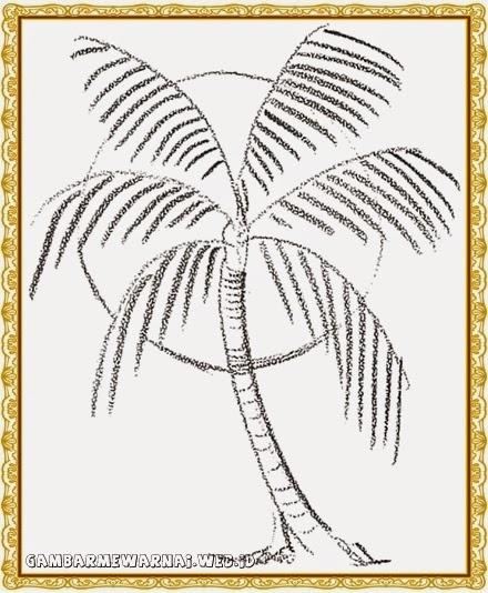 tren 29 cara menggambar pohon kelapa dengan pensil