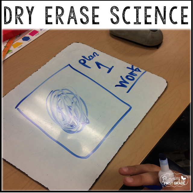 Dry erase board ideas for science