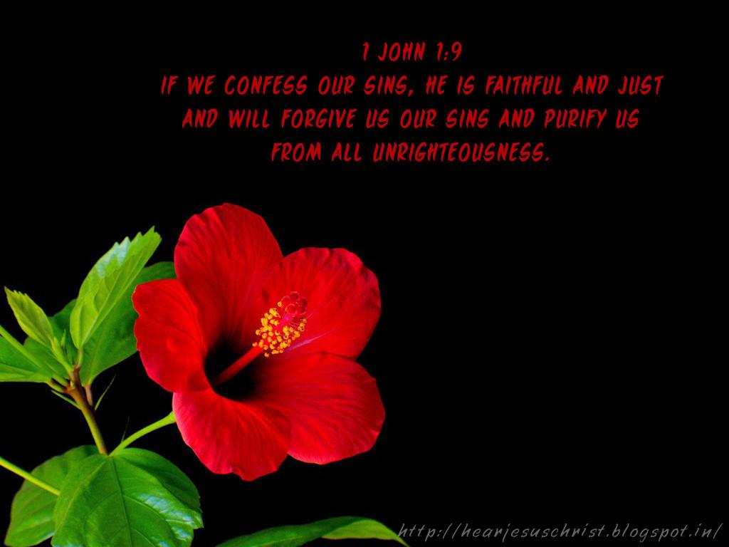 Christian Wallpapers Bible Verse Wallpaper 1 John 19
