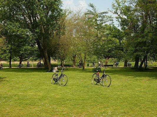 passeio bicicleta amsterdam