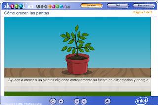 http://capitaneducacion.blogspot.com.es/2017/11/3-primaria-ciencias-de-la-naturaleza_38.html