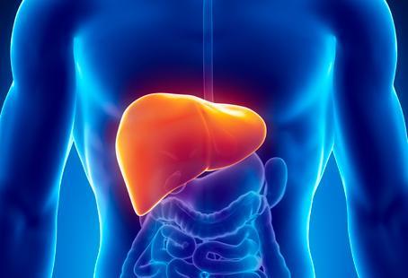 Tips Menjaga Kesehatan Hati - 6 Manfaat Jamur Hitam Bagi Kesehatan,Salah Satunya Bisa Menurunkan Berat Badan