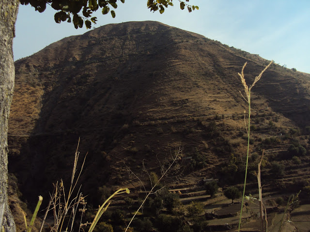 hill near tiger fall