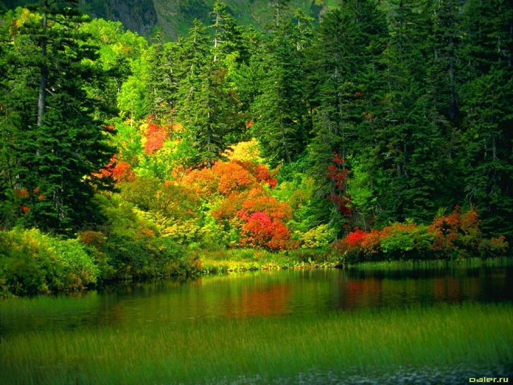 Pemandangan Cantik Foto Dunia Alam Semesta INDONESIA