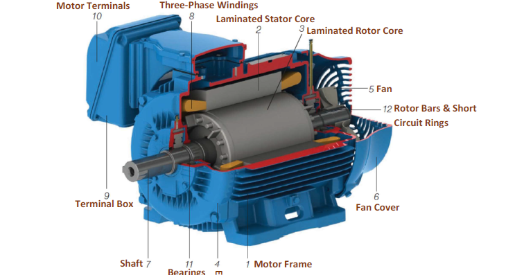 Basic Parts Of A Three Phase 3 Squirrel Cage Induction Motor