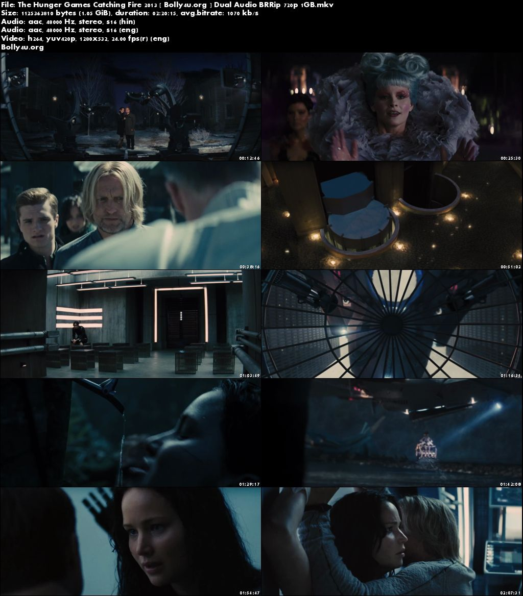 The Hunger Games Catching Fire 2013 BRRip 400MB Hindi Dual Audio 480p Download