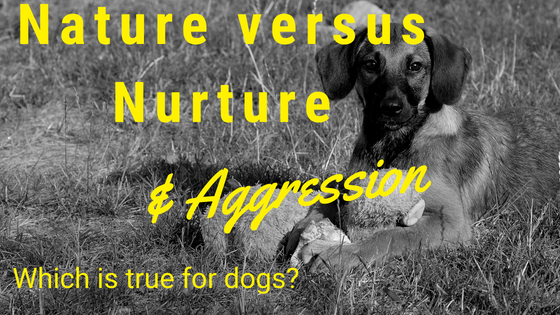 nature versus nurture dogs