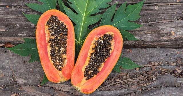 semintele de papaya sunt un foarte bun detoxifiant