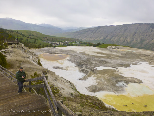 Mammoth Hot Springs, Main Terrace - Yellowstone, por El Guisante Verde Project