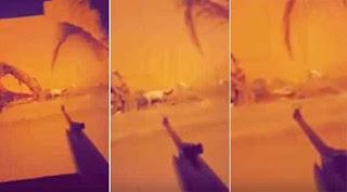 سفاح القطط يتباهى بجرائمه ويوثقها عبر سناب شات.. والسلطات السعودية تبحث عنه