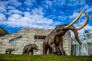 Norwegian Glacier Museum & Ulltveit-Moe Climate Centre, Fjærland