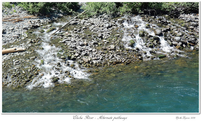 Elwha River: Alternate pathways