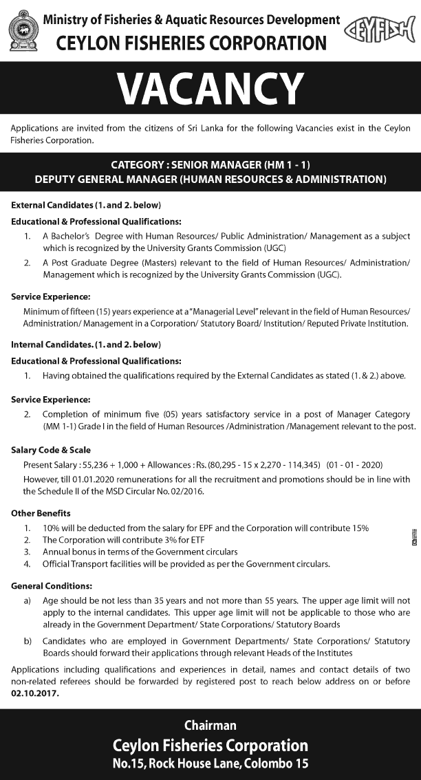 Vacancies] Senior Manager, Deputy General Manager (HR