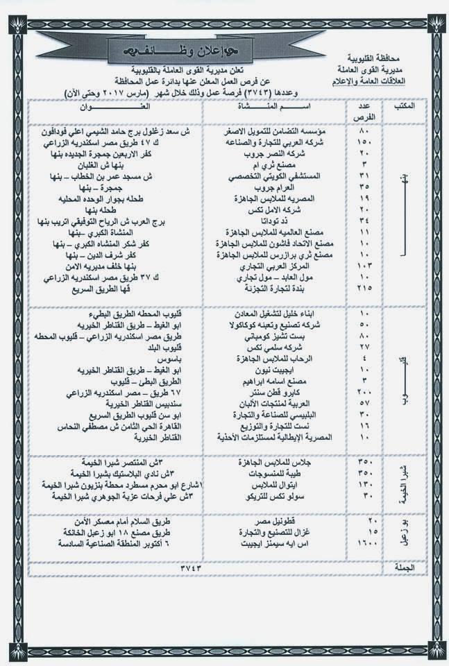 """اعلان وظائف وزارة القوى العاملة 3743 وظيفة لجميع المؤهلات """" العليا - الدبلومات - بدون مؤهل """" برواتب تصل 3500 - اضغط للتقديم"""