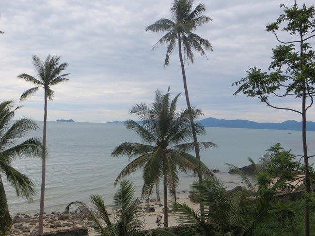 Море, пляж, камни и пальмы