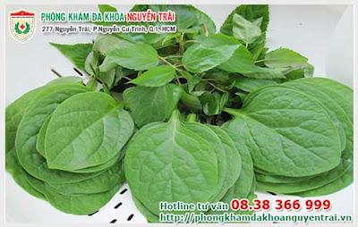 nhung-phuong-phap-chua-benh-tri-tai-nha-thong-dung-3