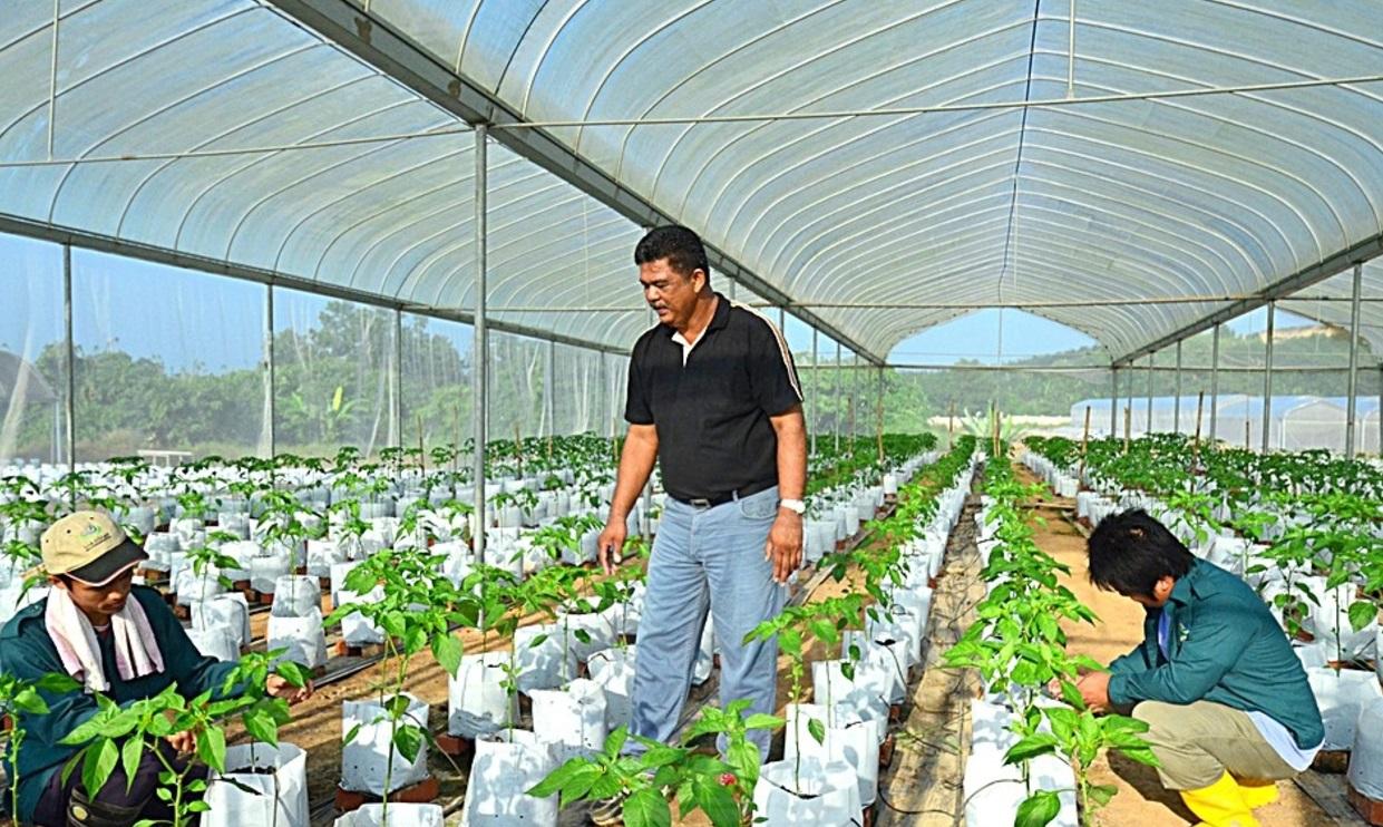 Anim Agro Technology Cabaran Sektor Pertanian