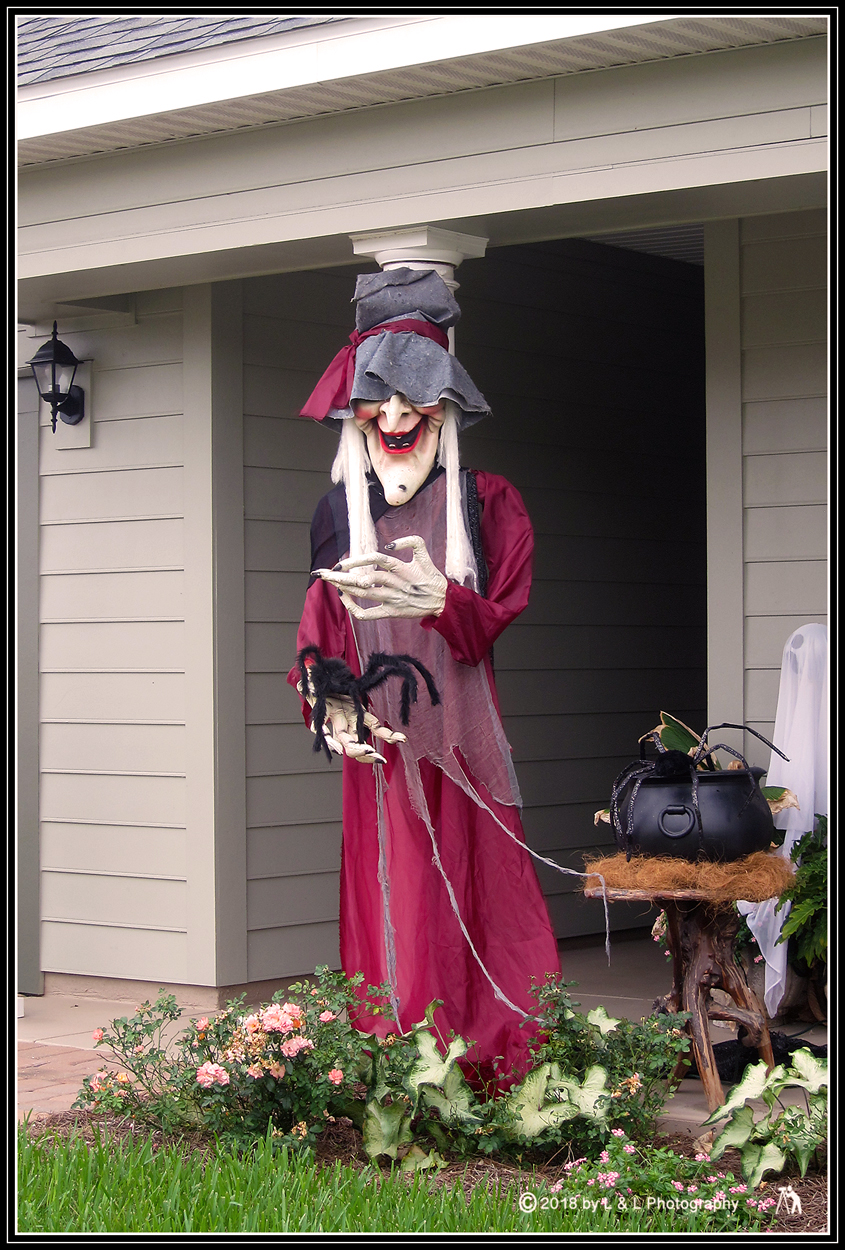 Ocala, Central Florida & Beyond: Ye Olde Witch