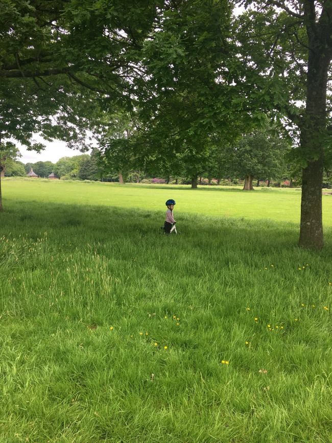 toddler-on-bike-in-long-grass-at-Tredegar-park