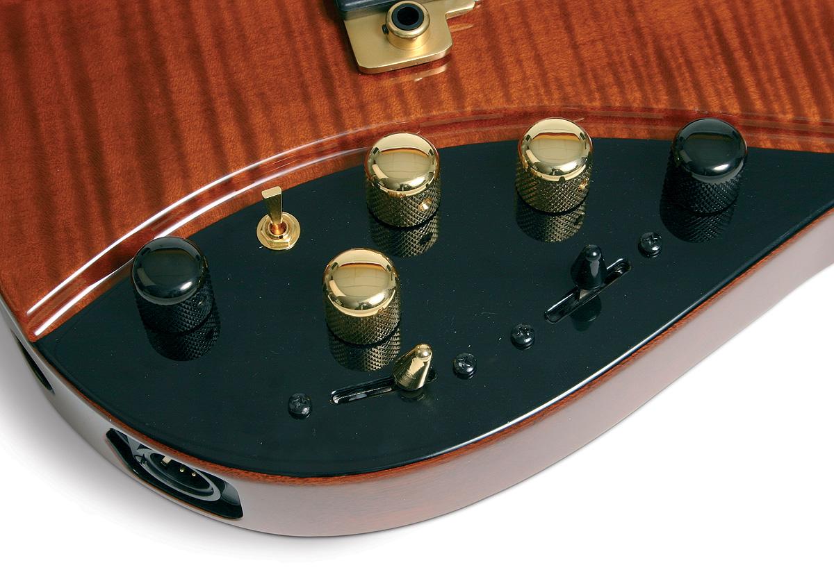 the unique guitar blog the moog guitar. Black Bedroom Furniture Sets. Home Design Ideas