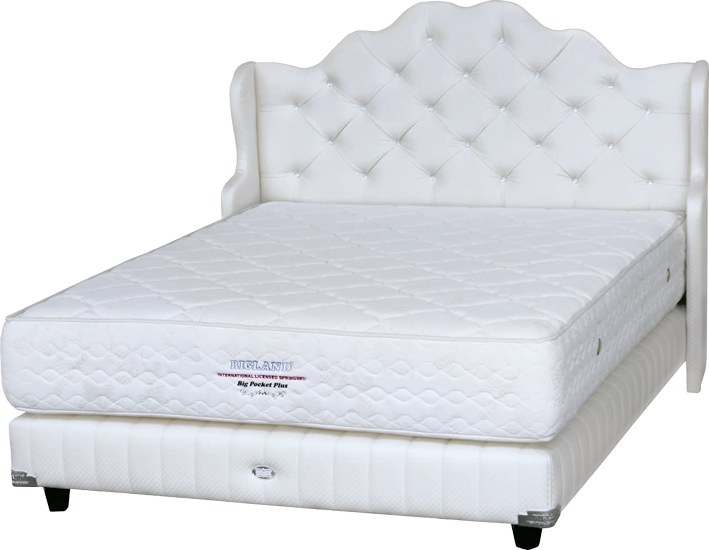 Harga Spring Bed Bigland Big Pocket Plus di Purwokerto