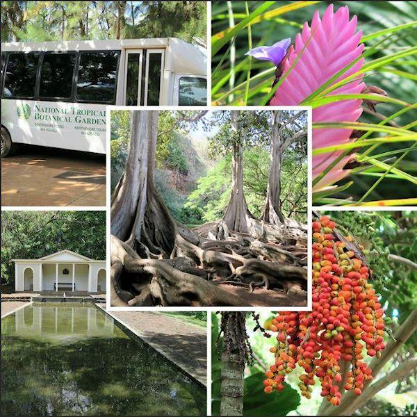 Allerton Tropical Botanical Garden, Kauai