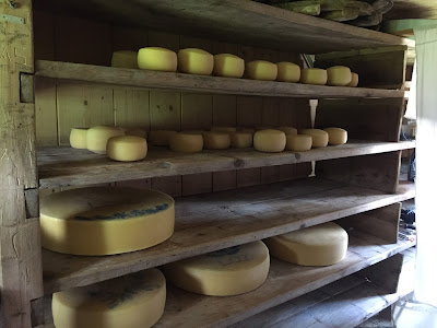 Cheese produced at Planina Laz that you can buy.