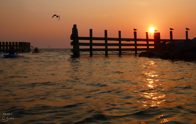 Красивые фотографии с Flickr за неделю 31.07-07.08