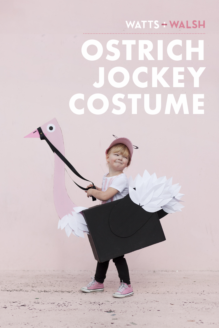 make your own DIY fun kids ostrich jockey costume cardboard box