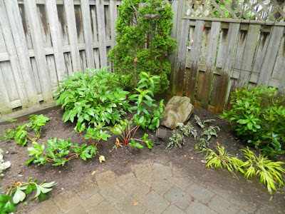 Cabbagetown Toronto shade garden with new perennials after by Paul Jung Gardening Services