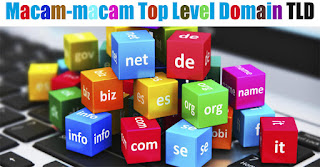 macam macam jenis tdl Top Level Domain.