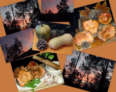 Ternera con rovellones(niscalos) y atardeceres en Collserola