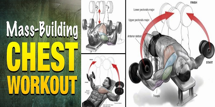 Best Chest Workout Routine For Mass
