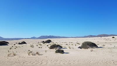 deserto di corralejo