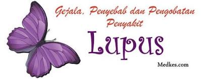 http://www.medkes.com/2014/01/gejala-penyebab-dan-pengobatan-penyakit-lupus.html