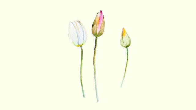 Watercolor Spring Flowers Desktop Wallpaper 2 / www.thejoyblog.net