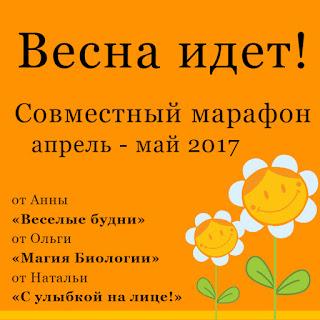 http://veseliebydni.blogspot.ru/2017/04/vesna-idet-sovmestnyj-marafon.html