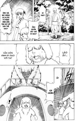 Gintama Chap 208 page 21 - Truyentranhaz.net